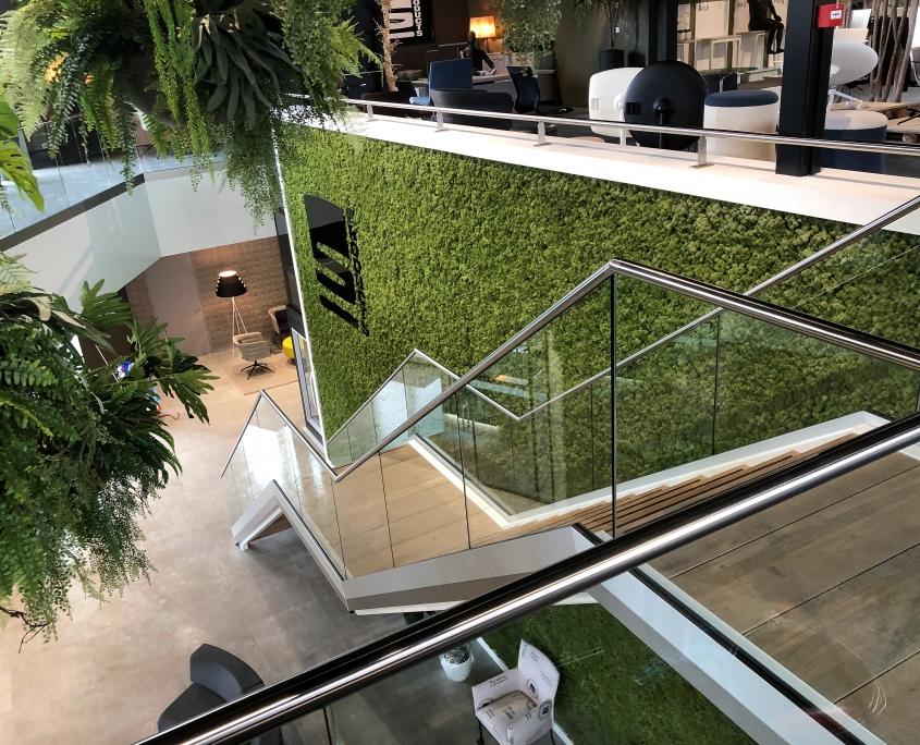 stalen trap showroom met glas